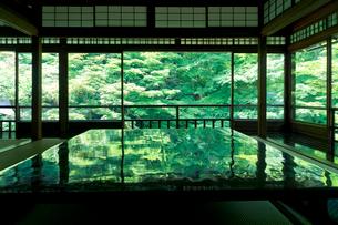 新緑の瑠璃光院の写真素材 [FYI01602339]