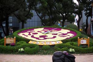 神戸三ノ宮の花時計の写真素材 [FYI01602504]