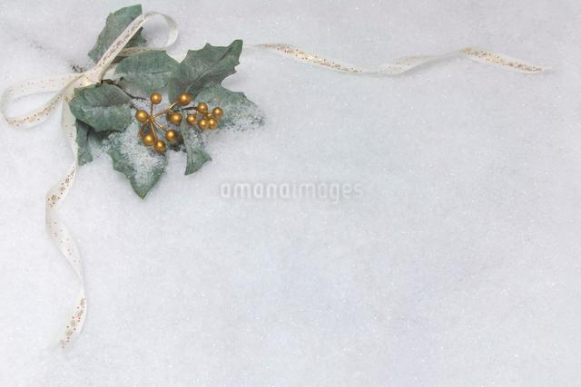 リボンとヒイラギの葉のクリスマスイメージの写真素材 [FYI01602761]