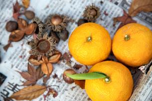 ゆずと木の実の写真素材 [FYI01602789]