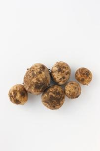 土のついたジャガイモの写真素材 [FYI01602858]