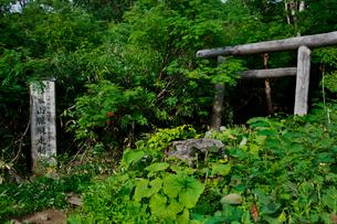 鳥居と「日本山脈縦走起点」の標識の写真素材 [FYI01603066]