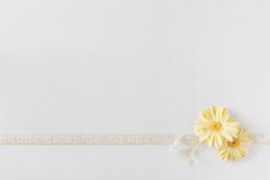 黄色の花とリボンの写真素材 [FYI01603072]
