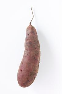 サツマイモの写真素材 [FYI01603225]