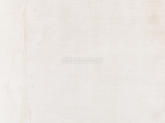 白い塗装の木板の写真素材 [FYI01603253]