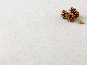 松ぼっくりとどんぐりとグレーの布の写真素材 [FYI01603256]