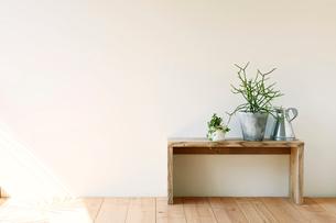 観葉植物とベンチとジョウロの写真素材 [FYI01603279]