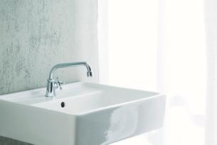洗面所とカーテンの写真素材 [FYI01603294]