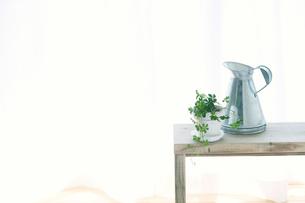 窓辺に置いたベンチと観葉植物とジョウロとカーテンの写真素材 [FYI01603305]