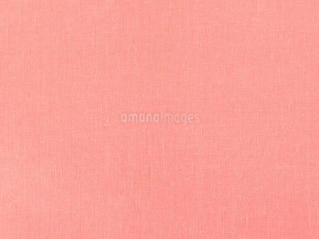 ピンクの布の写真素材 [FYI01603350]