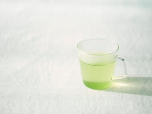 緑茶の写真素材 [FYI01603388]