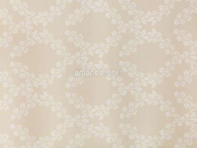 ベージュと白の花がらの壁紙の写真素材 [FYI01603394]