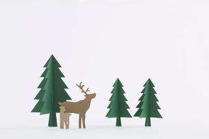 もみの木とトナカイの写真素材 [FYI01603465]