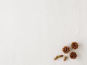 松ぼっくりとどんぐりと白い布の写真素材 [FYI01603467]