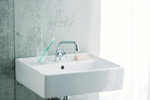 洗面所とカーテンの写真素材 [FYI01603510]