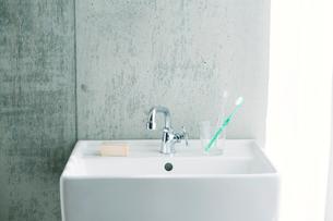 洗面所とカーテンの写真素材 [FYI01603515]