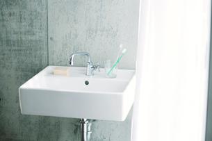 洗面所とカーテンの写真素材 [FYI01603530]