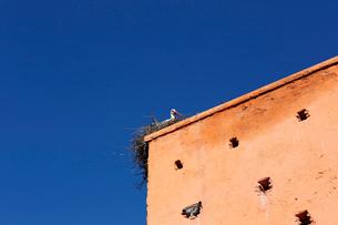 モロッコ マラケシュの旧市街の城壁の写真素材 [FYI01603541]