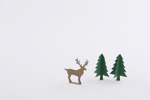 もみの木とトナカイの写真素材 [FYI01603590]