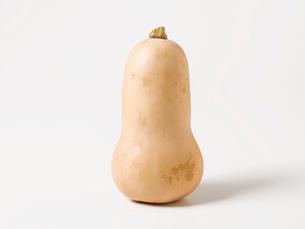 バターナッツの写真素材 [FYI01603697]
