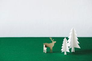 もみの木と動物の写真素材 [FYI01603703]