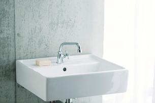 洗面所とカーテンの写真素材 [FYI01603755]