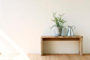 観葉植物とベンチとジョウロの写真素材 [FYI01603818]