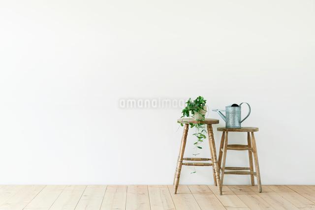 スツールと白い壁と木の床と観葉植物の写真素材 [FYI01604118]