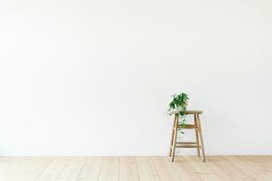 スツールと白い壁と木の床と観葉植物の写真素材 [FYI01604203]