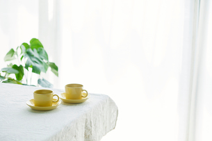 コーヒーカップとテーブルとカーテンの写真素材 [FYI01604214]