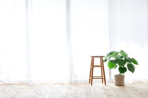 窓とカーテンとスツールと観葉植物の写真素材 [FYI01604218]