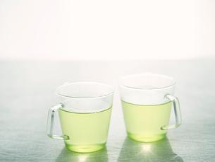 緑茶の写真素材 [FYI01604271]