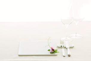 テーブルセッティングの写真素材 [FYI01604436]