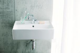 洗面所とカーテンの写真素材 [FYI01604459]