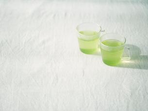 緑茶の写真素材 [FYI01604472]