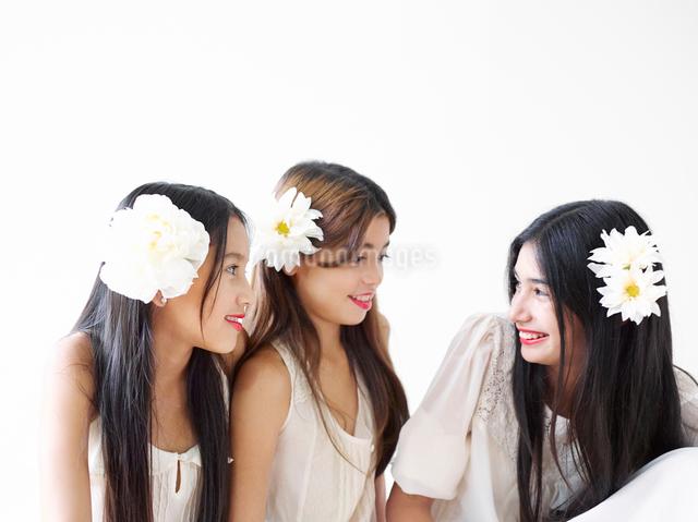おしゃべりをする3人の女の子の写真素材 [FYI01604480]