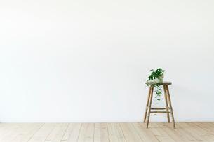 スツールと白い壁と木の床と観葉植物の写真素材 [FYI01604587]