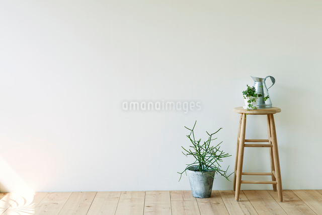 観葉植物とスツールとジョウロの写真素材 [FYI01604631]
