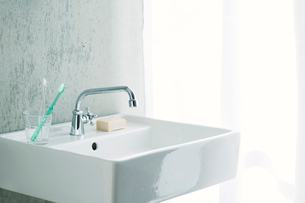 洗面所とカーテンの写真素材 [FYI01604715]