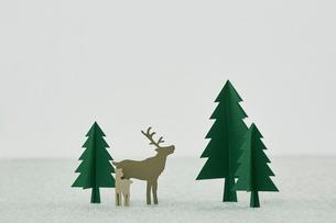 クリスマスの写真素材 [FYI01604751]