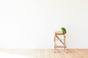 木の床と白い壁と脚立の写真素材 [FYI01604793]