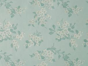 水色の花柄の布の写真素材 [FYI01604913]