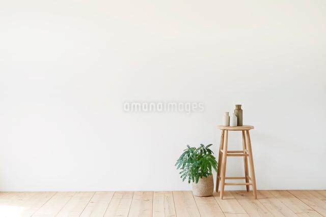 スツールと観葉植物の写真素材 [FYI01604934]
