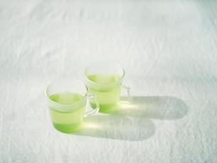 緑茶の写真素材 [FYI01605015]