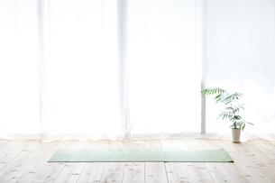 窓とカーテンと観葉植物とヨガマットの写真素材 [FYI01605090]