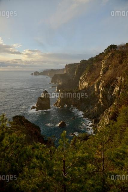 夜明けの海岸の写真素材 [FYI01605237]