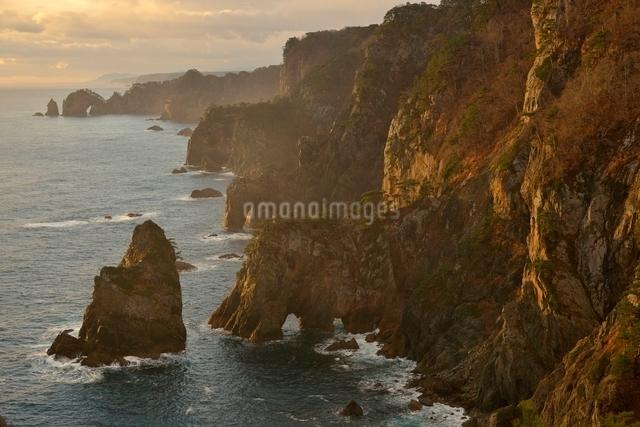 夜明けの海岸の写真素材 [FYI01605251]