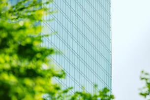 ビルと緑の写真素材 [FYI01605309]