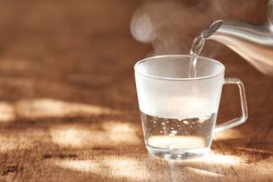 白湯の写真素材 [FYI01605318]