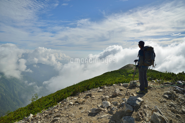 八方尾根を登る登山者の写真素材 [FYI01605400]